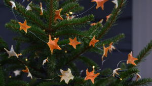 Girlanger av metalltråd och mandarinskal i julgranen