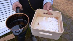 Det bjöds på sockerbitar doppade i tjära vid tjärdalen i Övermark.
