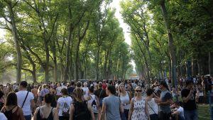 Festivalområdets promenadstråk.