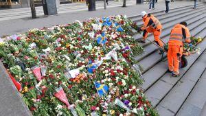 De blommor som lagts vid Åhléns flyttades under morgonen till Sergelstrappan.