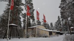 Flaggor som vajar vid Lärkkulla folkakademi i Karis.
