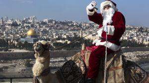 En palestinsk man i tomteutstyrsel ride rpå en kamel i Jerusalem.