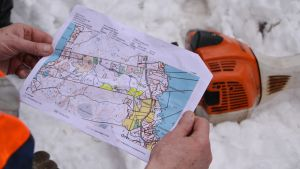 Karta över skogsskifte på Emsalö i Borgå