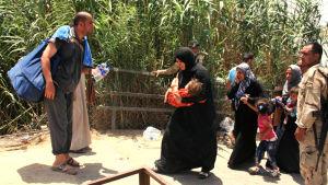 Irakier från provinsen Anbars centralort Ramadi på flykt undan Islamiska staten.