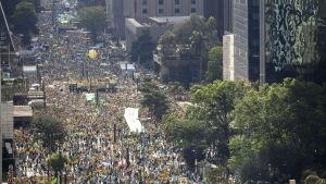 Demonstranter i Brasilien kräver president Dilma Rousseffs avgång.