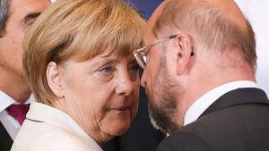 Tysklands förbundskansler Angela Merkel talar med EU-parlamentets ordförande Martin Schulz vid EU-toppmötet i Bryssel 30.8.2014.