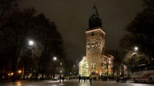 Åbo domkyrkas julgran 2015