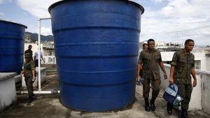 Armén bekämpar Aedes aegypti-myggan