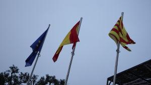 EU:n, Espanjan ja Katalonian liput liehuvat salossa.