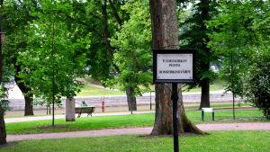 Domkyrkoskvären i Åbo