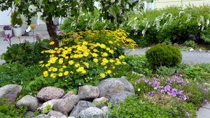 Blommor på en innergård.