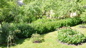 Fredrikas trädgård i Borgå.