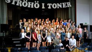 Deltagarna i Ströhö i toner 2015.