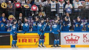 Finlands ishockeylejon jublar över ett mål.