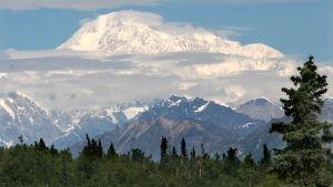 Alaska McKinley-vuori