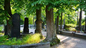 gravgård