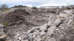 Det byggs bostäder på Fabriksudden i Hangö, en park är förorenad och jord och träd tas bort.