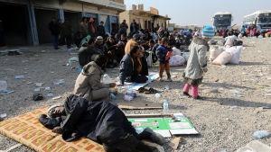 Flyktingar från östra Mosul väntar på transport till flyktingläger 27.11.2017