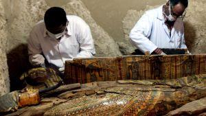 Gravfynd i Egypten.