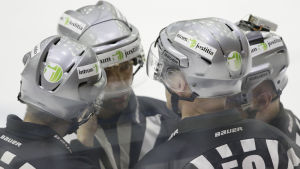 Domare i ishockeyligan.