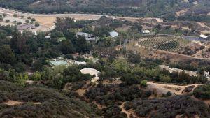 Avokadoodlingarna i Kalifornien har drabbats av värmeböljor under sommaren.