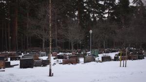 Ekenäs nya begravningsplats