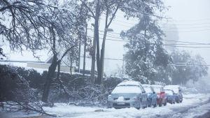 Snötäckta bilar och fallna träd på en gata i Santiago de Chile 15.7.2017.