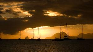 Segelbåtar i solnedgången i Martinique.