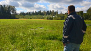 Niklas Sjöskog, jordbrukare i Pedersöre ser ut över en blöt åker.