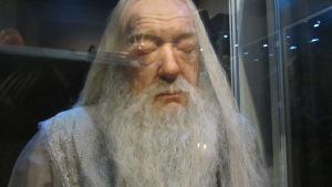 Professori Dumbledore nukkena Harry Potter -studiokierroksella Englannissa