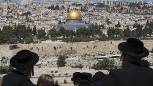 Ultraortodoxa judar på den uråldriga judiska begravningsplatsen på Olivberget den 17 april 2016