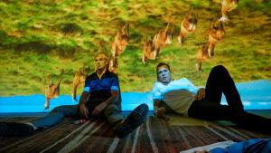 Simon (Jonny Lee Miller) och Renton (Ewan McGregor) halvligger på golvet medan det projiceras bilder av en flock djur på väggen bakom dem.