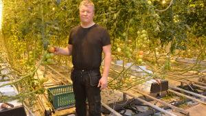 Grönsaksodlaren Joakim Strand i Närpes