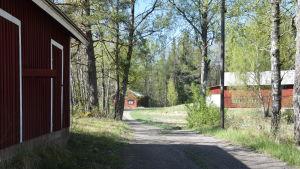Röda gårddsbyggnader längs en väg.