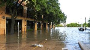 Översvämning i Houston i Texas