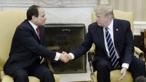 Egyptens president Abd al-Fattah al-Sisi och USA:s president Donald Trump skakar hand i Vita huset.
