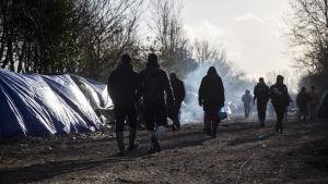 Flyktinglägret Grande-Synthe nära Dunkerque brann upp innan den skulle tömmas