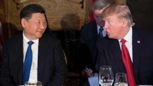 Kinas president Xi Jinping och USA:s president Donald Trump i Florida den 6 april 2017.