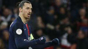 Zlatan Ibrahimovic har gjort en makalöst bra säsong i PSG.