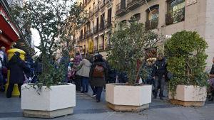 Jättelika blomkrukor i betong ska stoppa fordon från att köra in på en gata som leder till Plaza del Sol där Madridbor väntas fira nyår.