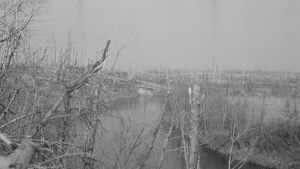 Rajajokea Valkeasaaren aseman raunioista luoteeseen toukokuussa 1944.