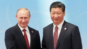 Rysslands president Vladimir Putin skakar hand med Kinas president Xi Jinping.