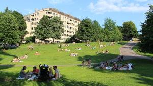 Koffens park i Helsingfors