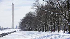 Snö i Washington USa