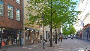 Stora Robertsgatan i Helsingfors juni 2015