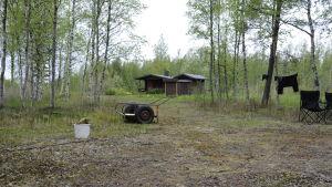 Sommarstuga i grönskan på Hanhikivi, sopkärl och liten kärra i förgrunden