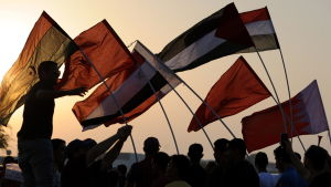 Protesters wave the flags of the Arab Spring countries, along the Bahraini flag (R), during a rally in Aali village south of the Bahraini capital Manama 18 November 2011.