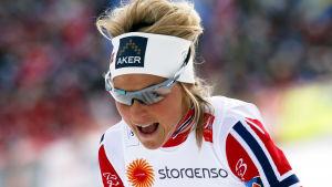 Therese Johaug har haft en skadefylld träningssäsong.