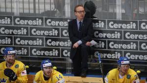 Sveriges chefstränare Pär Mårts står i avbytarbåset under en match i ishockey-VM 2016.