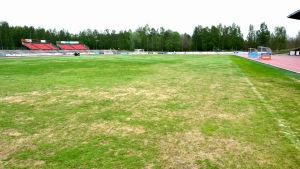Gräsplanen på Karlsplan är i dåligt skick. Det här fotot är taget dagen efter Stafettkarnevalen.
